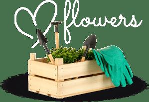 flowers strona główna florens opole