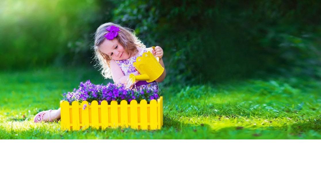 kwiaty-do-ogrodu1 strona główna florens opole