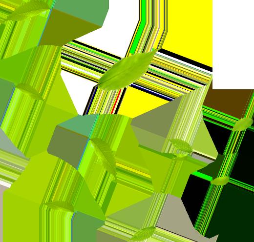 liscie-lewa historia firmy florens opole
