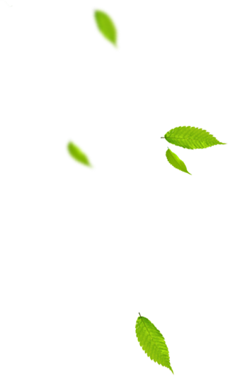 liscie nawozy organiczne florens opole