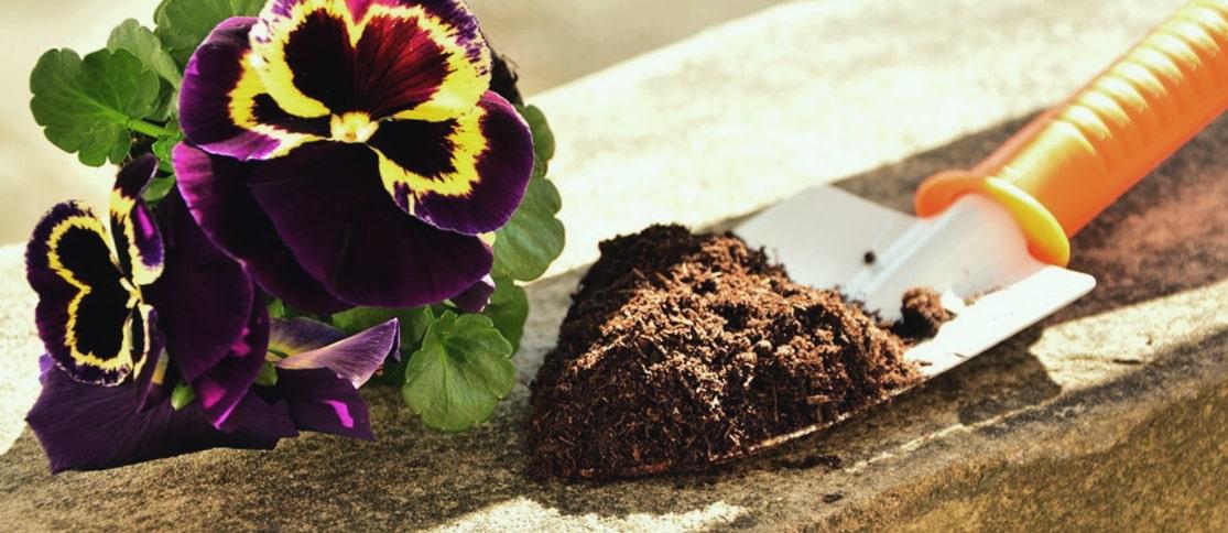 3.-Zdrowa-gleba-i-rosliny strona główna florens opole