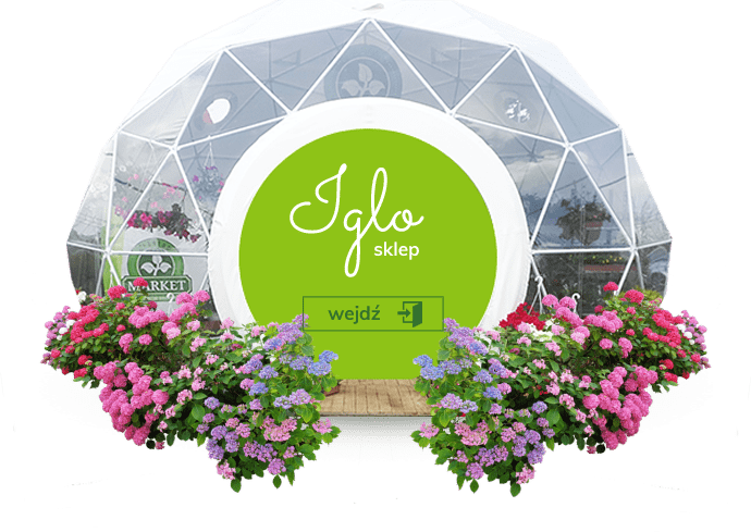 nowe-iglo-sklep-hov strona główna florens opole