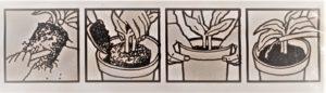 PALIK KOKOSOWY do pnączy. Filodendrony, Monstera Variegata, Epipremnum florens opole